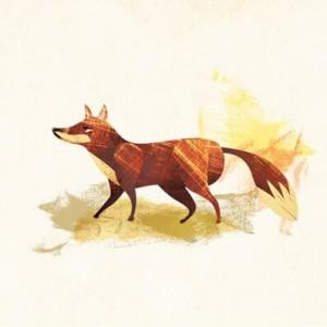 squares_fox